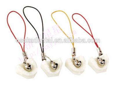Exquisite denture mobile phone chain/dental decoration/dental gifts/dental cultural products